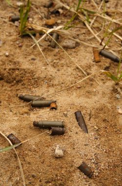 Empty ammo shell casing in the sand